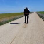 Meando por el camino