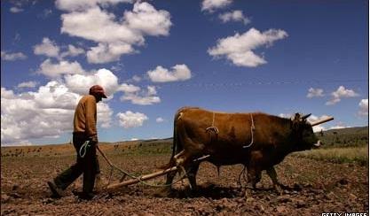 Fotos de campesinos sembrando 76